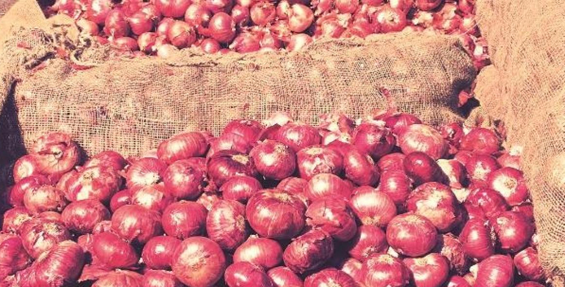 onion exports and starting imports