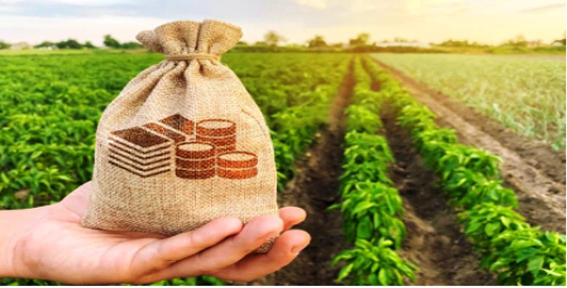 interest free crop loan