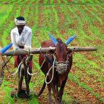 मोठी बातमी : पंतप्रधान किसान योजनेंतर्गत ३१ मार्चपूर्वी नोंदणी केल्यास मिळणार दुप्पट फायदा