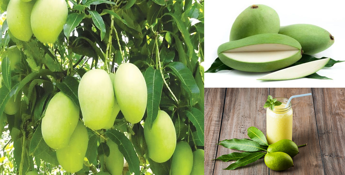 Health benefits of eating raw mango