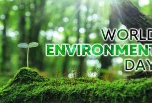 World Environment Day: The need to focus on what is needed to protect the environment