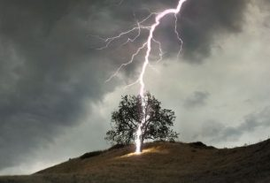 deaths due to lightning in many states of the country